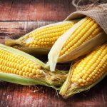 Terza fase di crescita nell'agrobusiness